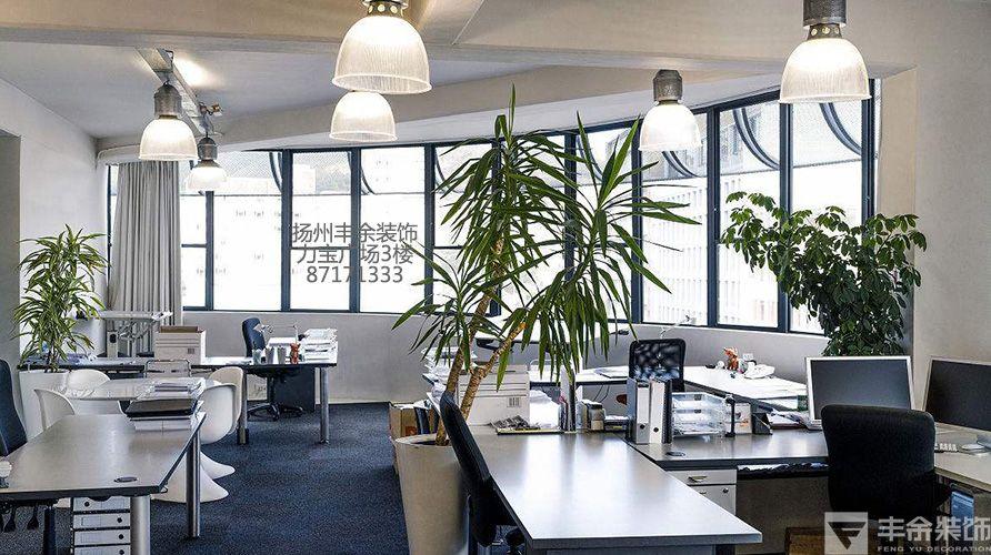 办公室风水植物 如何化解不利环境